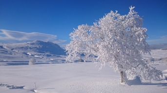 A proximité des Estables en hiver